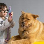 Suikerziekte bij je hond is goed te behandelen