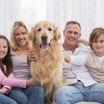 Dierenverzekering hond, een goed plan