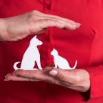 Dierenverzekering vergelijken consumentenbond